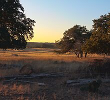 Ranch at dusk by Colin Bester