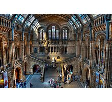 The Natural History Museum: London. Photographic Print