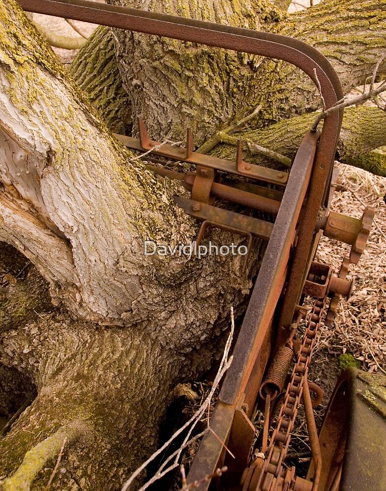 Abandoned Manure Spreader - Parts by Davidlphoto