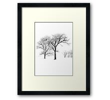 Snow Trees II Framed Print