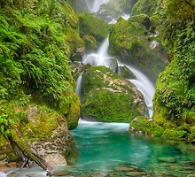 Mackay Falls - Milford Track by Phil McComiskey