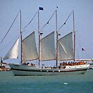 Schooner on Lake Michigan by psphotogallery