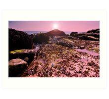 seaweed on the Rocks! Art Print