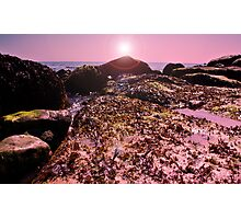 seaweed on the Rocks! Photographic Print