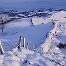 Winter Morning - The Helm, Cumbria by Dave Lawrance