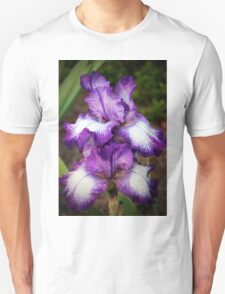 Purple And White Iris T-Shirt