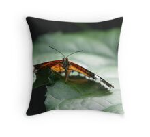 Butterfly Penang Throw Pillow