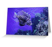 Lion Fish - Denver Aquarium Greeting Card