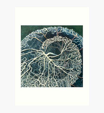"""Cochlea Blood Supply"" Art Print"