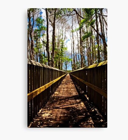 Floridian Boardwalk Canvas Print