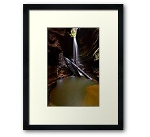 Hidden Treasure..26-4-11. Framed Print