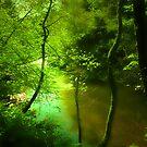 A BEAUTIFUL SUMMER WALK  by leonie7