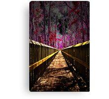 Complex Trail Canvas Print