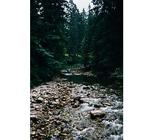 Blue Creek Photographic Print