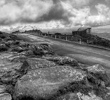 The Top of Tassie by Ian Colley