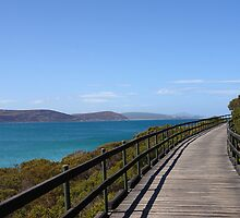Coastal boardwalk by georgieboy98
