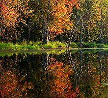 Autumn Reflection by Skye Hohmann