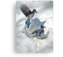 Those Were The Jays Canvas Print
