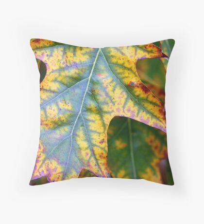 Touch of Autumn- Lanyon Homestead Canberra. Throw Pillow