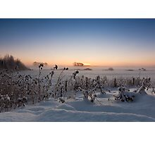 A winters sunrise Photographic Print