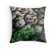 Brisbane Floods Of 2011 - Mud - Signs Of Life Throw Pillow