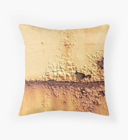 A Barren Land Throw Pillow