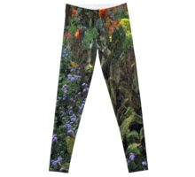 Nature's Abstract Leggings