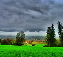 rainy landscape by Daidalos