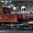 Port Erin Train by Jonny Andrews
