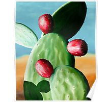 Tunas Rojo - oil painting of cactus in Mexico Poster