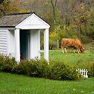 Outhouse by Jon Matthies