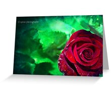 Grungy rose Greeting Card
