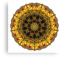 """Carousel Kaleidescope""  A Collaboration Canvas Print"