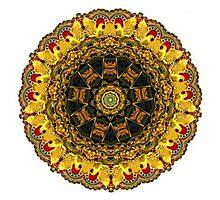 """Carousel Kaleidescope""  A Collaboration Photographic Print"