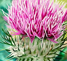 Grey Lady Thistle - oil painting of a wild thistle by James  Knowles