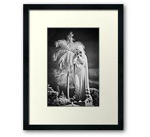 The Palm Tree Framed Print