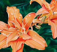 Lilaceous - oil painting of orange lilies by James  Knowles