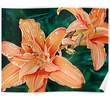 Lilaceous - oil painting of orange lilies Poster