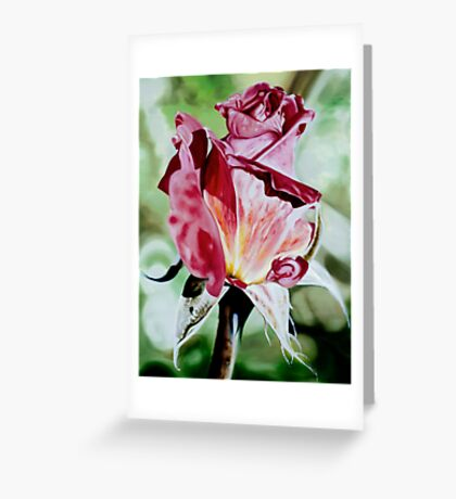 Rose Bud - oil painting of a rose bud Greeting Card