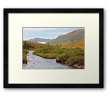 Willow Creek II Framed Print