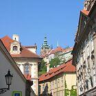 Praga veduta del castello by miriam17