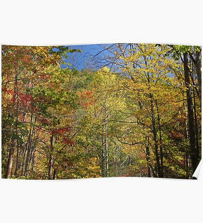 Autumn In The Smokies Poster