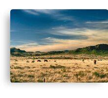 Alpine Ranch Canvas Print