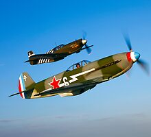 A Yakovlev Yak-3 & P-51A Mustang by StocktrekImages