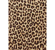 Leopard Print Photographic Print