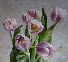 springtime by lucyliu