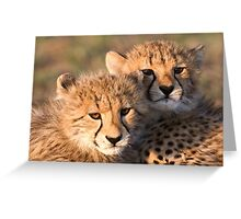 Sibling Comfort Greeting Card