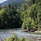 Elwha River, Olympic National Park, Washington by Stacey Lynn Payne