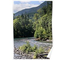 Elwha River, Olympic National Park, Washington Poster