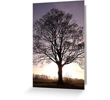 silhouetted oak Greeting Card